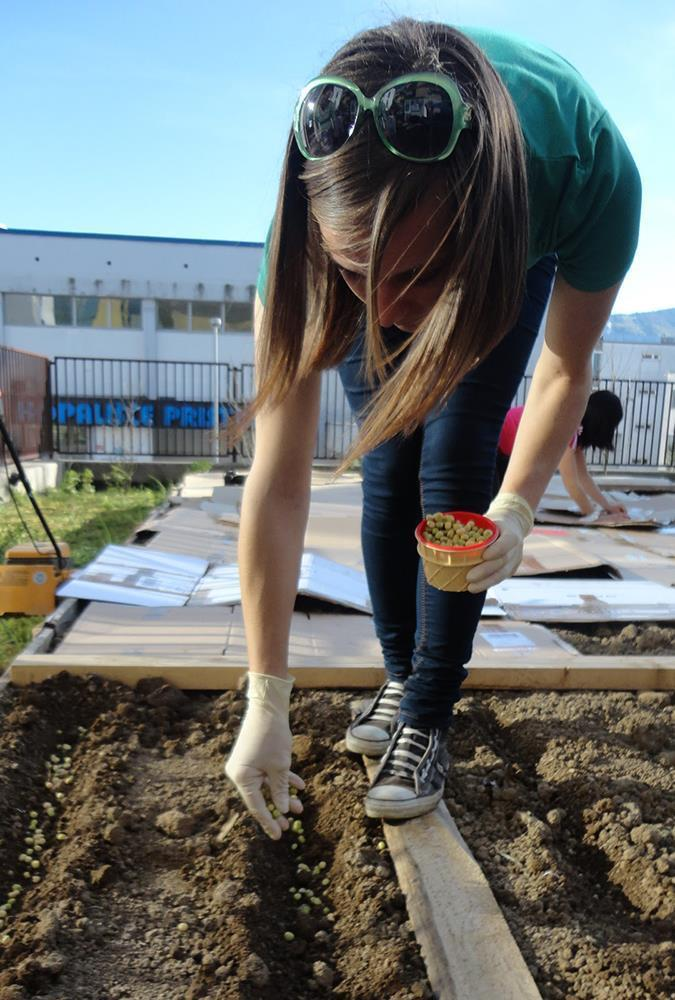 Mestni vrtovi, projekt Užij Maribor